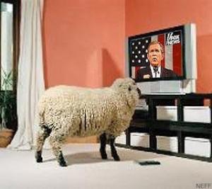 https://despabilar.files.wordpress.com/2012/04/sheep_tv.jpg?w=300